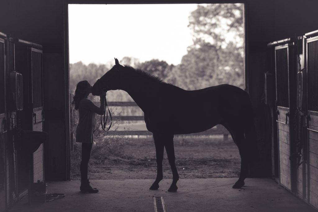 Jeune cavalière et son cheval dans uen écurie sombre