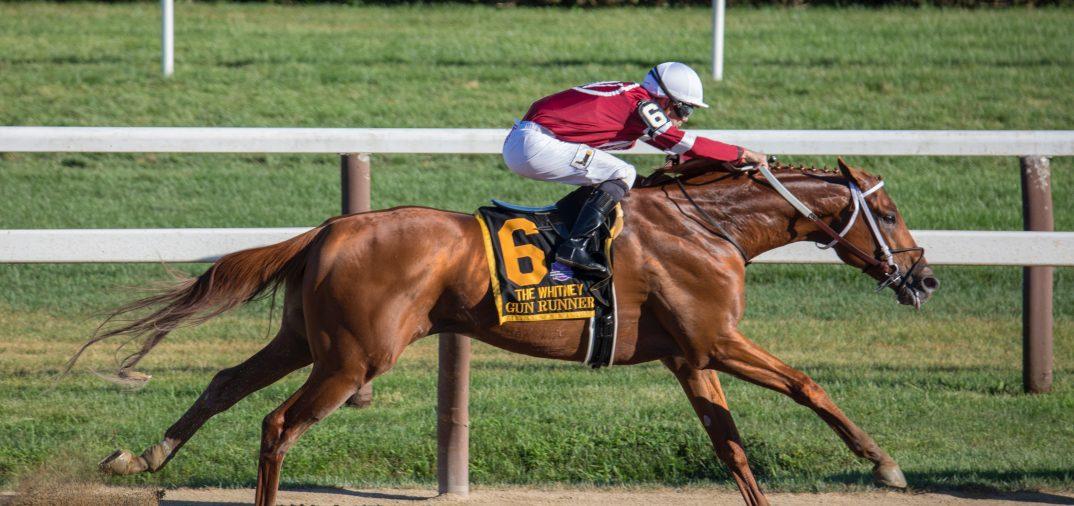 Cheval et son cavalier en pleine compétition sportive